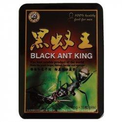 Черный королевский муравей BLACK ANT KING